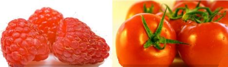 Mas Frutas y Verduras